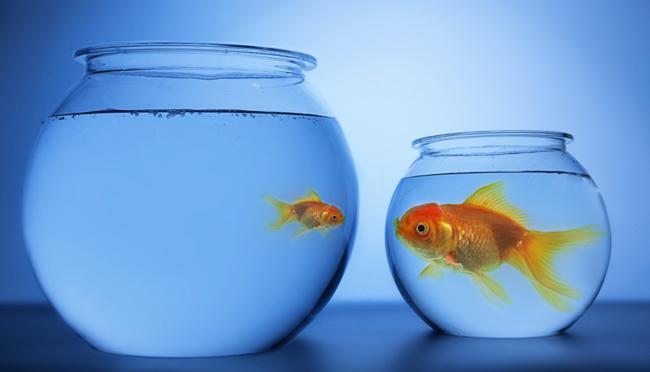 Τα σύγχρονα πλεονεκτήματα των μικρών επιχειρήσεων